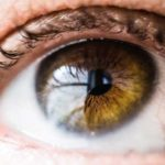 Everything you need to know about the eye exam